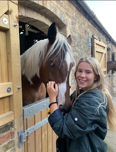Equine Care & Management Level 1 £114.00 / £38.00