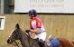Luke polo pony2_opt